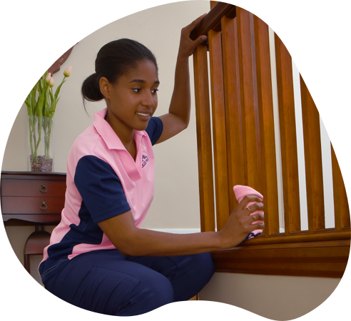 MOLLY MAID cleaner cleaning stairs