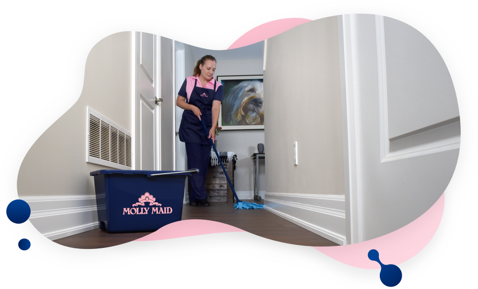 MOLLY MAID cleaner mopping floor of apartment