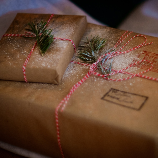 Eco-Friendly Ways to Deck the Halls's featured image