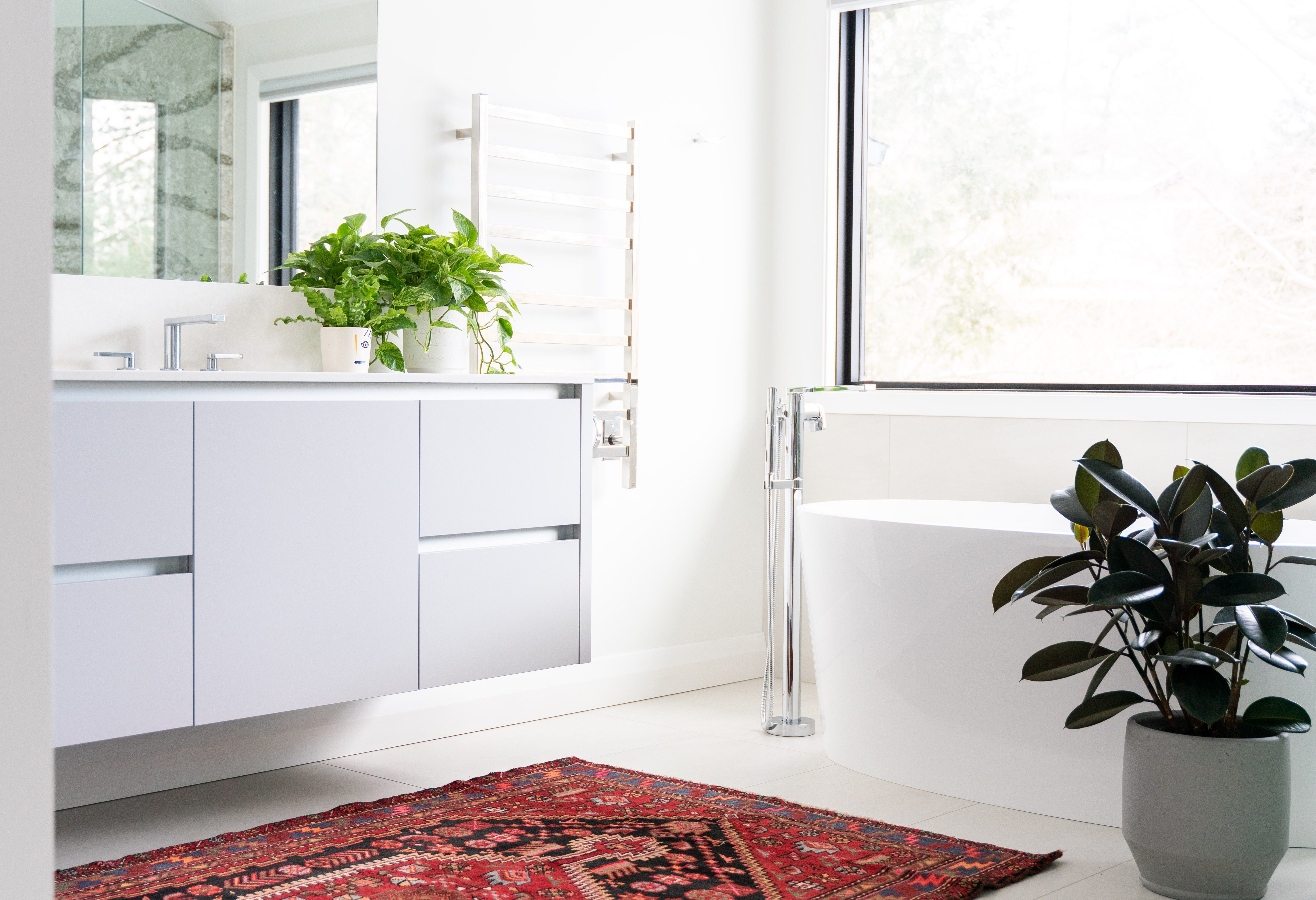 Create a Bathroom Oasis with Shower Plants's featured image
