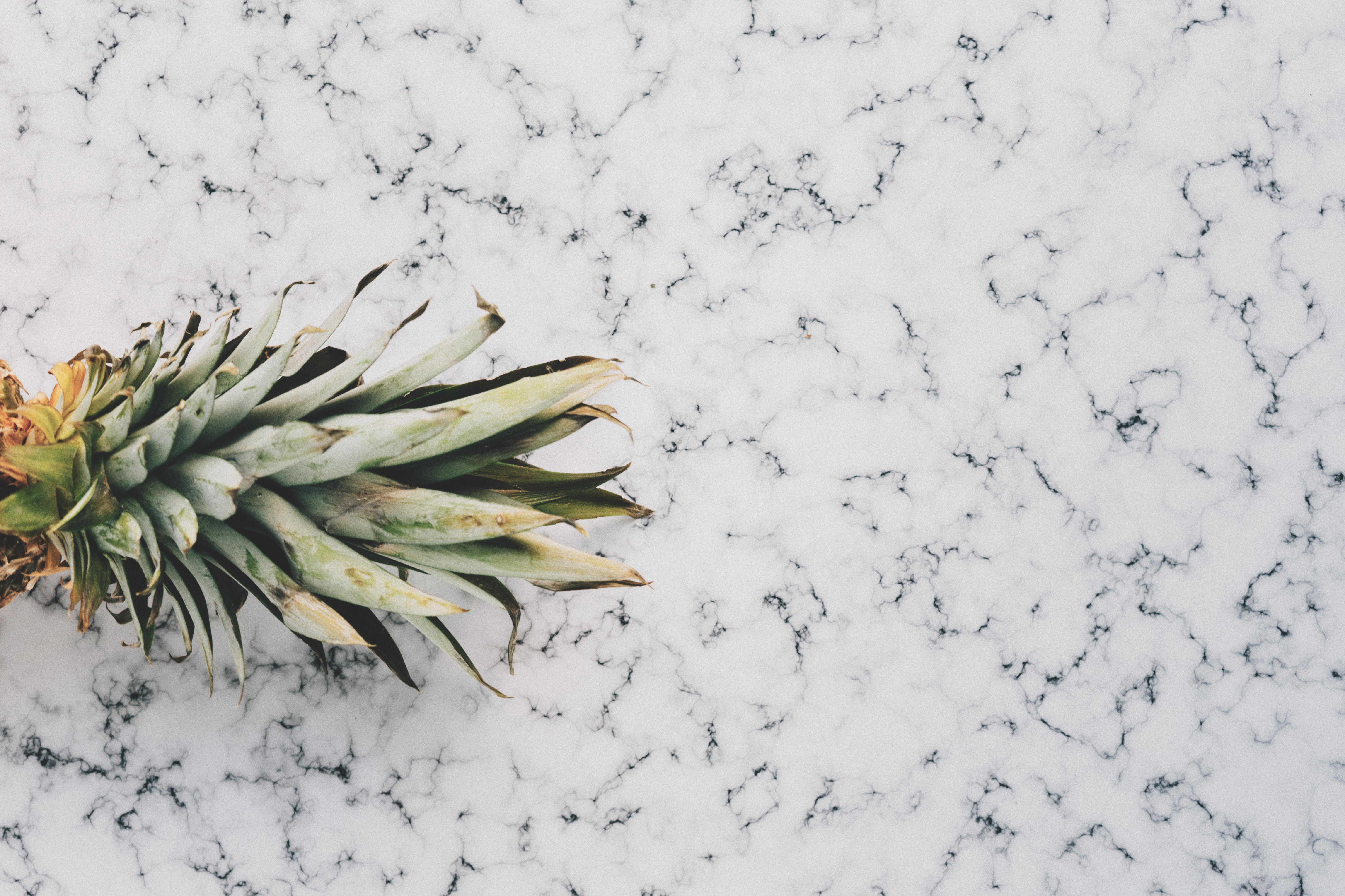 The Ultimate Guide to Cleaning Countertops's featured image