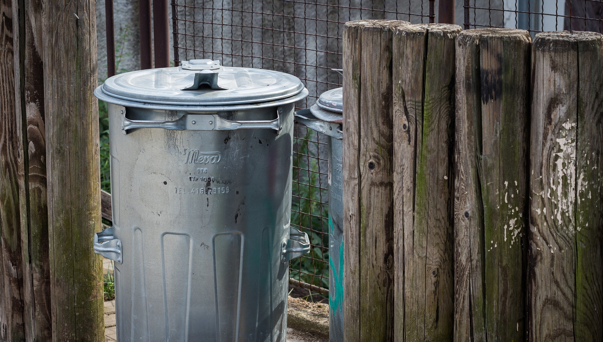 The 2020 Holiday Waste Guide's featured image