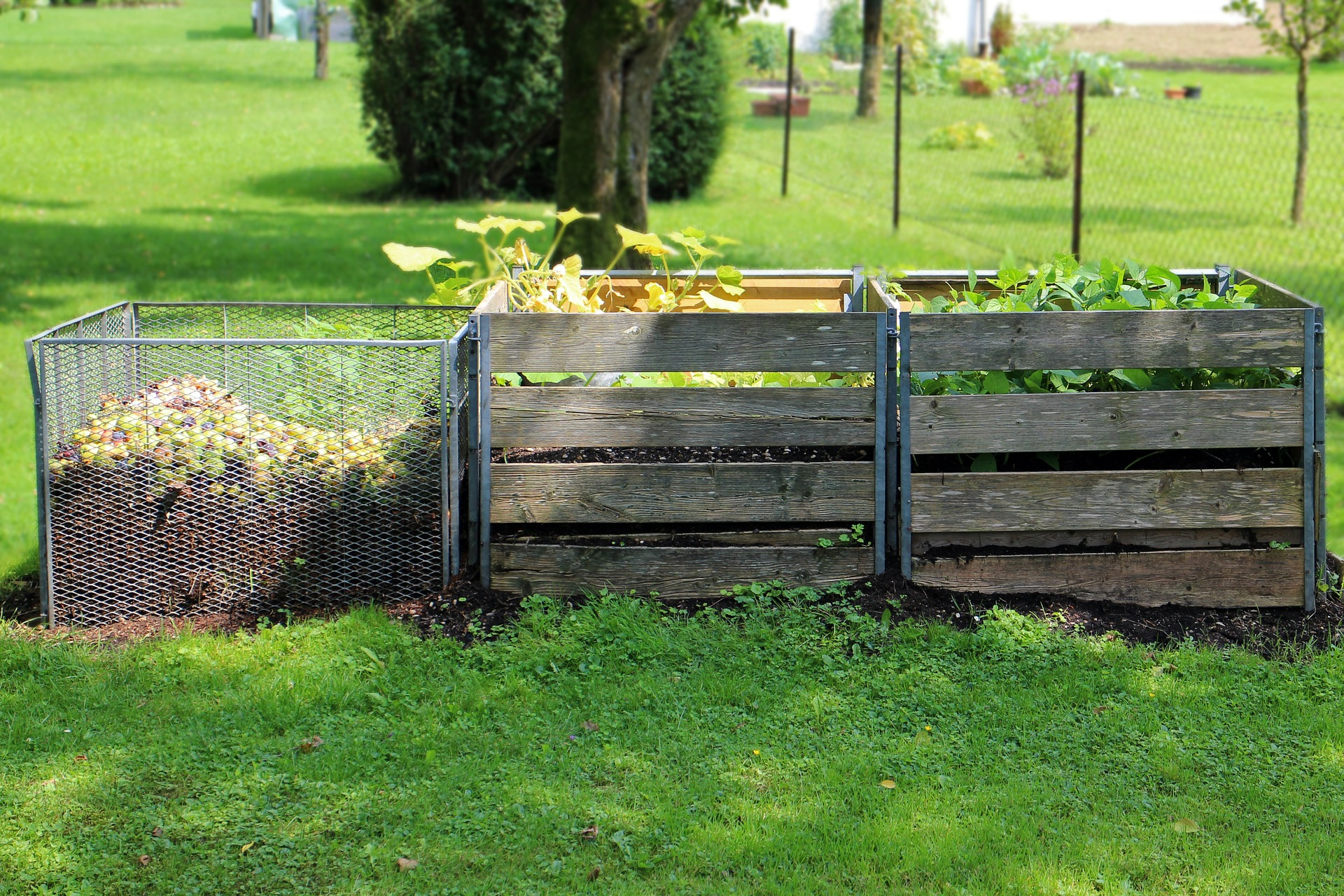 Setting up a Simple Backyard Compost System's featured image