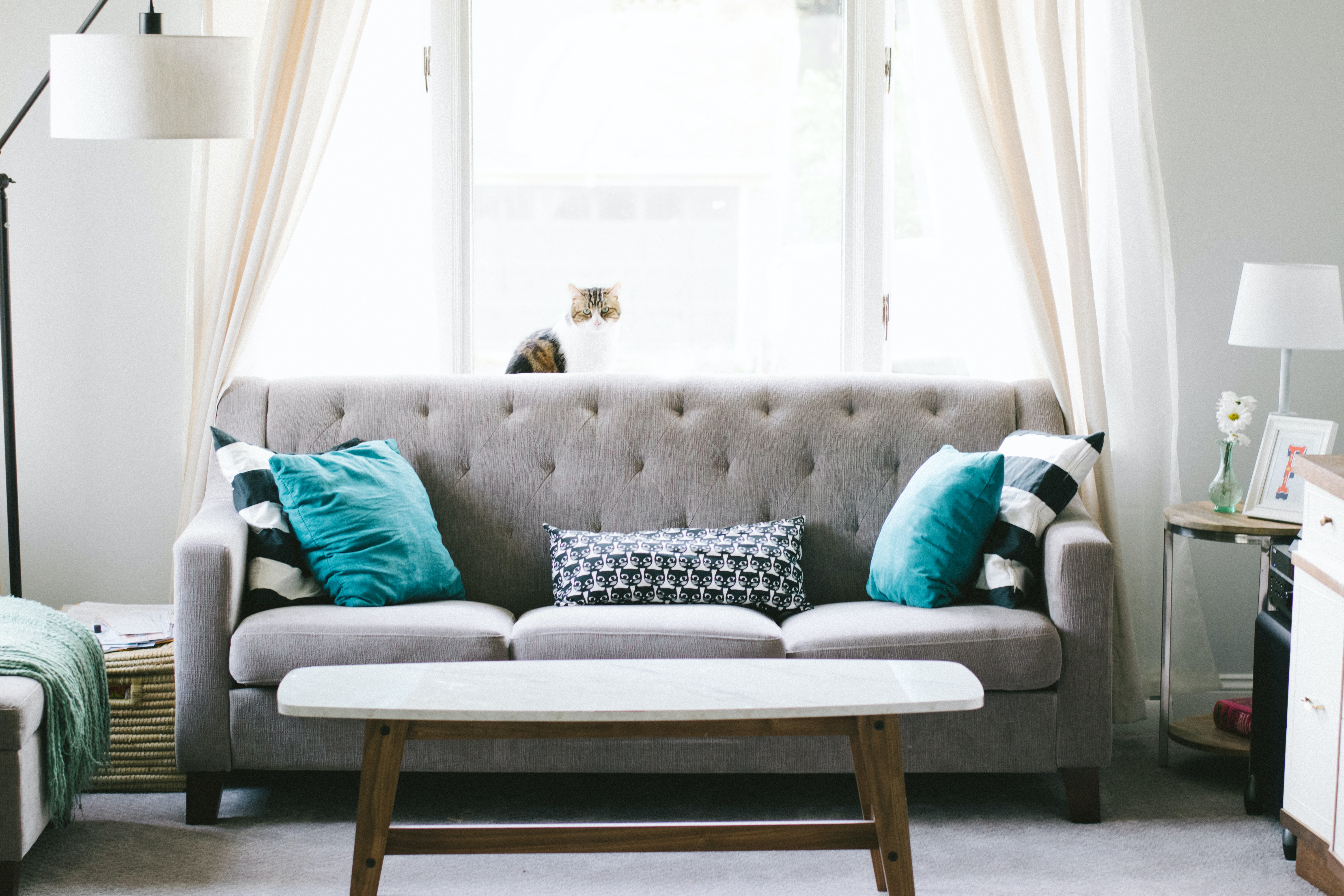Cleaning Your Couch from Top to Bottom to Underneath's featured image